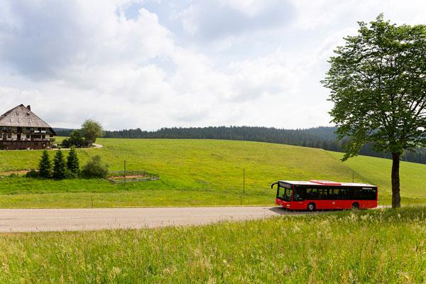 SBG_Bus_Landschaft_web
